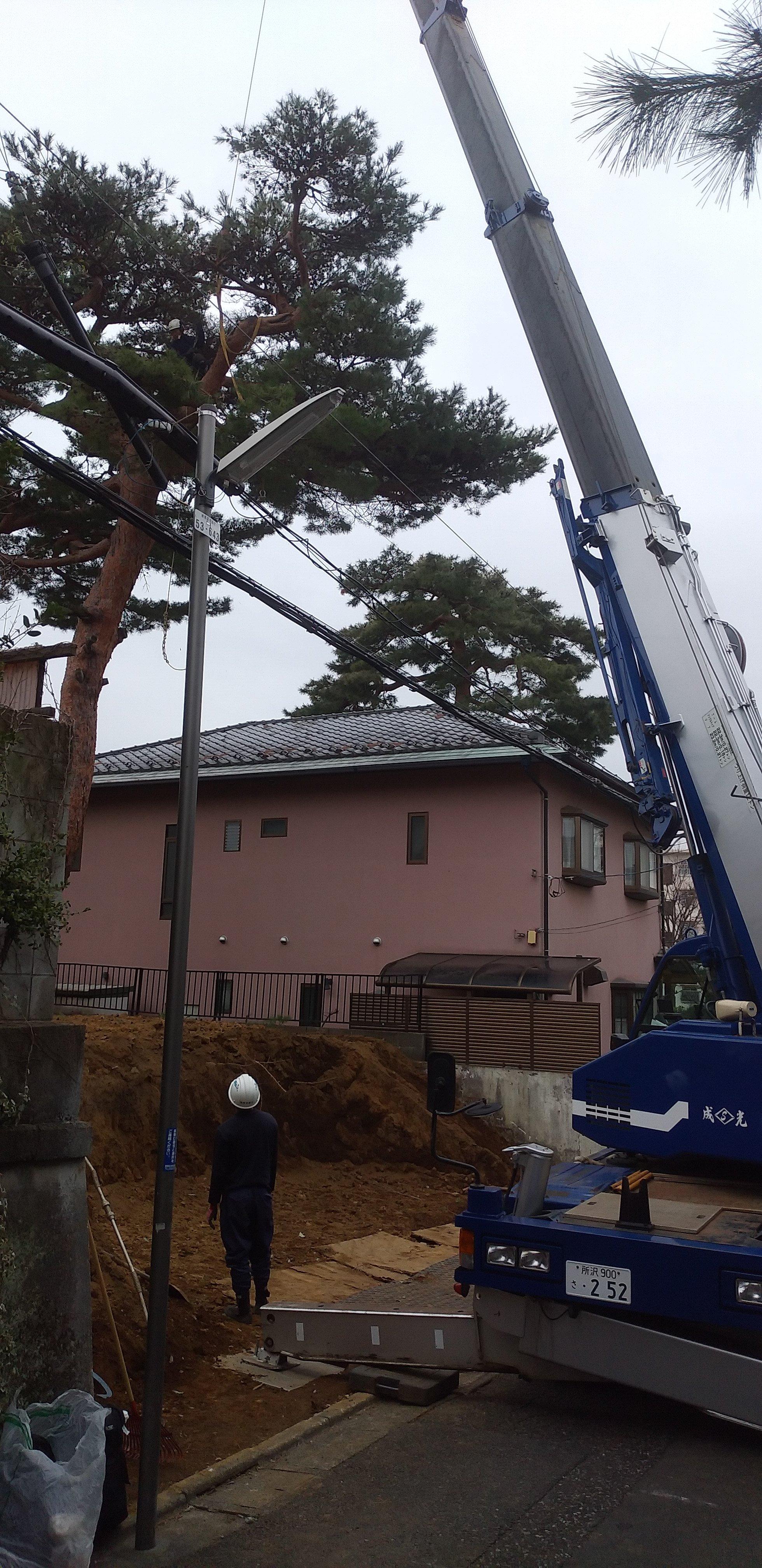 練馬区石神井町で保護樹木の伐採工事を行わせていただきました。
